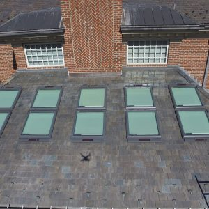 Stephans Completed Skylight, Oct 2017