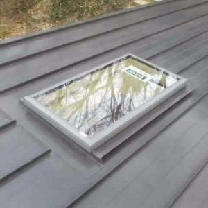 Roof with 1 skylight