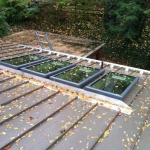 Skylights and Snow Fence on Standing Seam Roof - Jan 2013 (1)